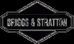 Briggs& Stratton Logo